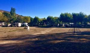 Camping_Don_Quijote.jpg